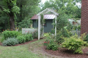 The garden shed provides a nice backdrop. Photo by Mariann Morris