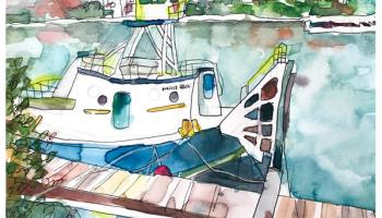 daily painting | catalina barge - emily weil art