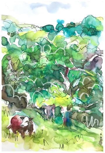 """watercolor, pen, pastel on paper   7"""" x 10""""   $90"""