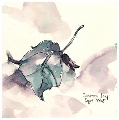 "watercolor, pen on paper | 5.5"" x 5.5"" | $40"