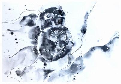 "artgraf graphite, pen on paper | 7"" x 10"" | $90"