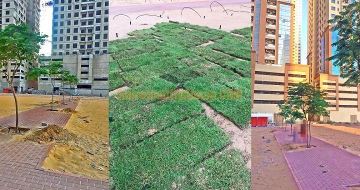 Emirates City Community Park Updates (NOV-2019)