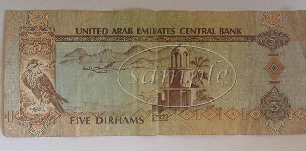 UAE 5 dirham note back