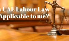 uae labour law in private sector