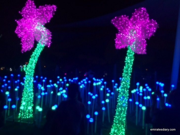 dubai-garden-glow-pictures-images-2015-emirates-diary-012