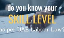 skill category as per uae labor law