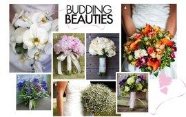 Bouquet Ideas | Budding Beauties