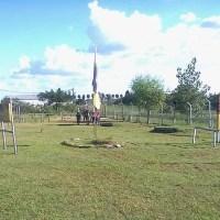 Equinoterapia: Profesionales de Oro Verde llevan sus conocimientos a Córdoba