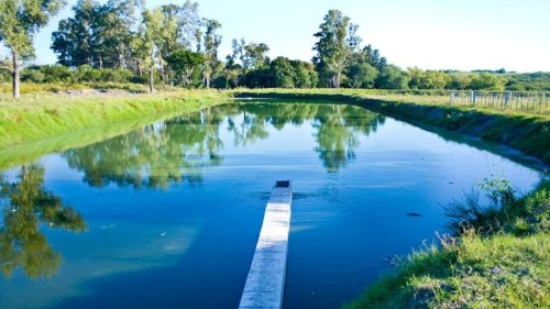 Licitación de la limpieza de Laguna de Tratamiento de Efluentes Cloacales