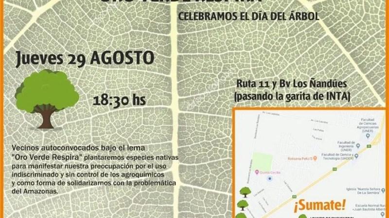 Vecinos de Oro Verde plantarán árboles