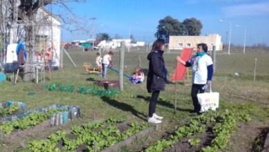 Photo of Productos agroecológicos se hicieron lugar en el Plan Argentina contra el Hambre
