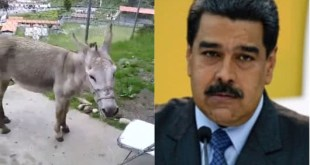 Video Viral Venezuela Bomberos Mérida Nicolás Maduro