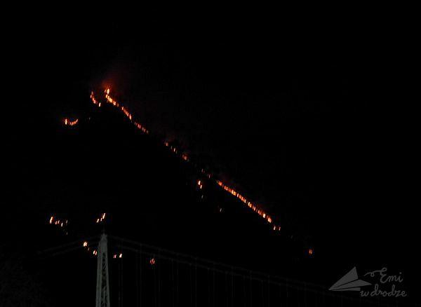 pożar_lasu