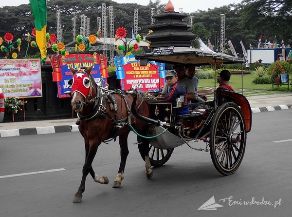 bryczka_konna_Indonezja