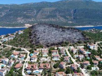 Antalya Kaş'ta Ağaçları Yanan Arazi İmara Açıldı