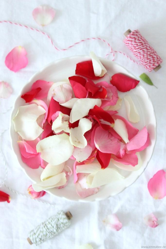 {Rezept} Rosensirup zum Selbermachen