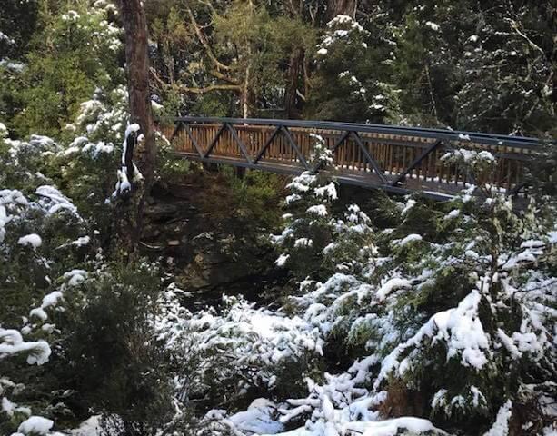 tasmania-pro-con-winter-1