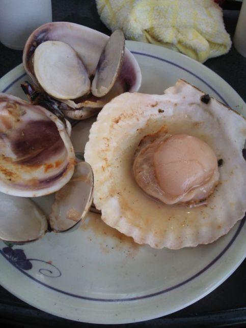 I love seafood!