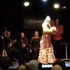 Cardamomo Flamenco Show Guitar Madrid Birthday