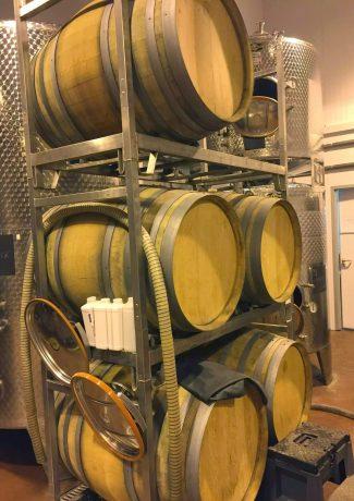 Bolney Wine Estate Sussex Tasting English Vineyard Valentines Sparkling Lunch Vines Grapes England Oak Barrels