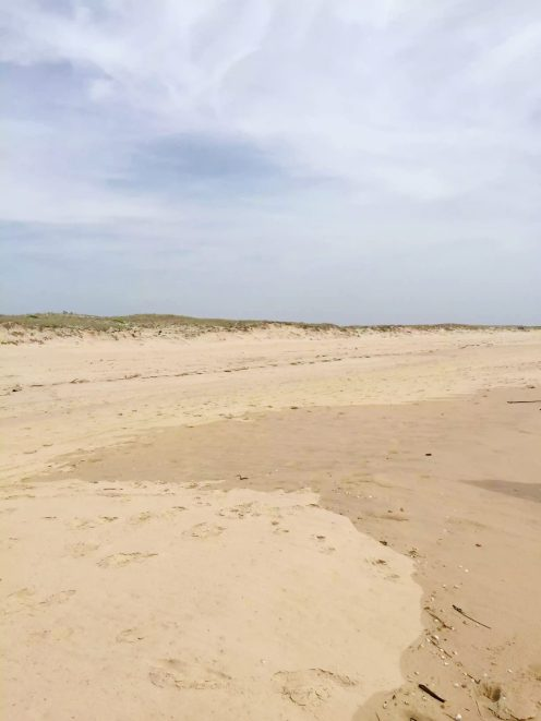 A Day Trip to Cap-Ferret, Arcachon, Aquitaine, France by Emma Eats & Explores