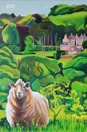 lady sheep 009