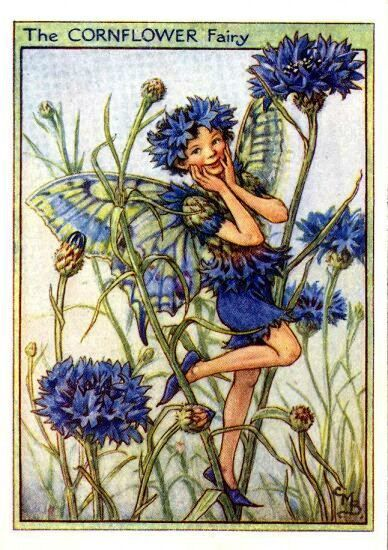 13a59abbd9756083cfcc741e3f395c2d--cicely-mary-barker-vintage-fairies