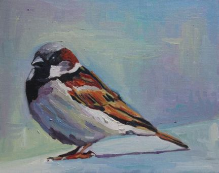 Big Sparrow - Copy