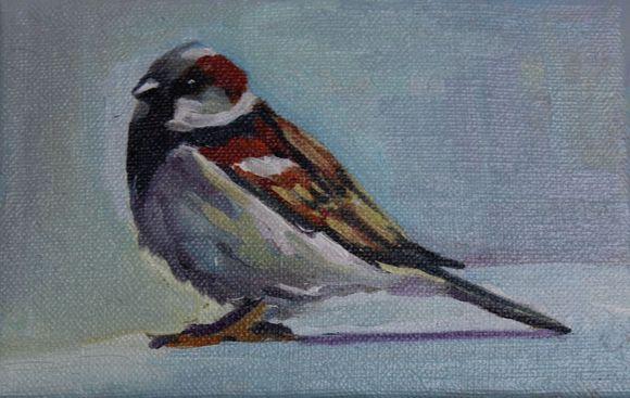 Sparrow # 1