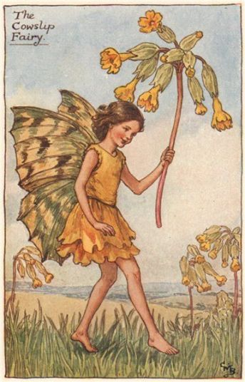 cowslip-fairy-by-cicely-mary-barker.-spring-flower-fairies-old-print-c1935-297750-p