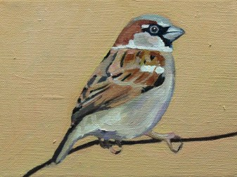 Sparrow painting for sale