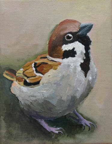 Sparrow Painting