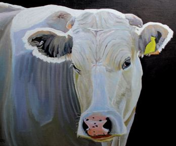 The White Cow, an oil painting by Emma Cownie