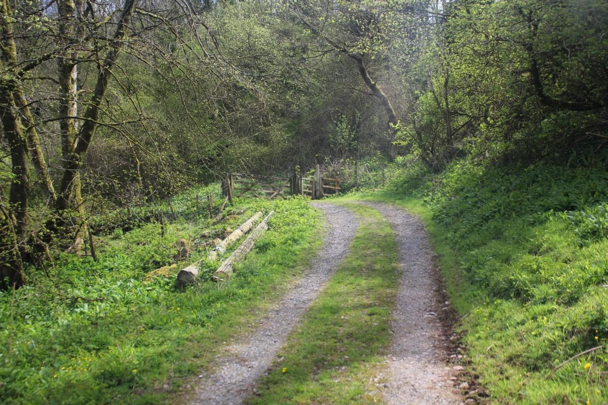 Path to Llanrhidian