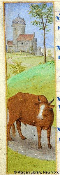 08a3ab105f54a531e7b9a23d123c2135--zodiac-signs-taurus-medieval-art