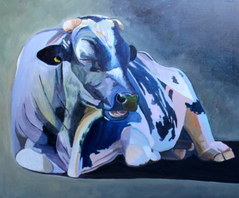 Sitting Bull an oil painting of a cow by Emma Cownie