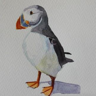 Puffin #1 watercolour