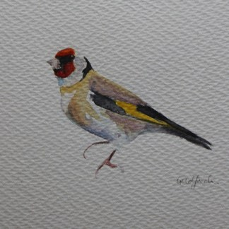 Goldfinch watercolour