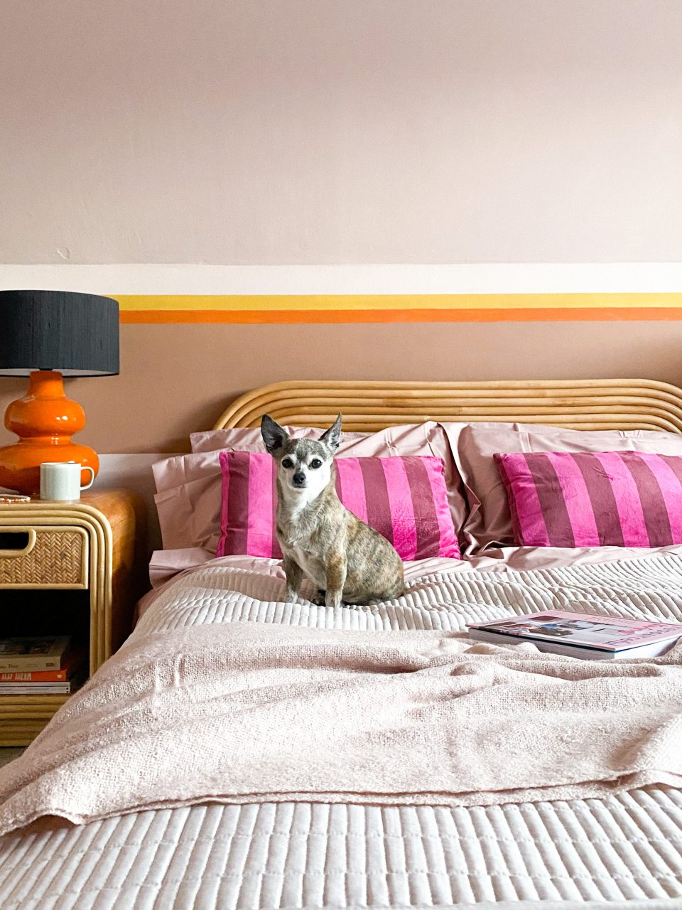small dog sitting on bed made with John Lewis ANYDAY bedding and pink stripy cushions