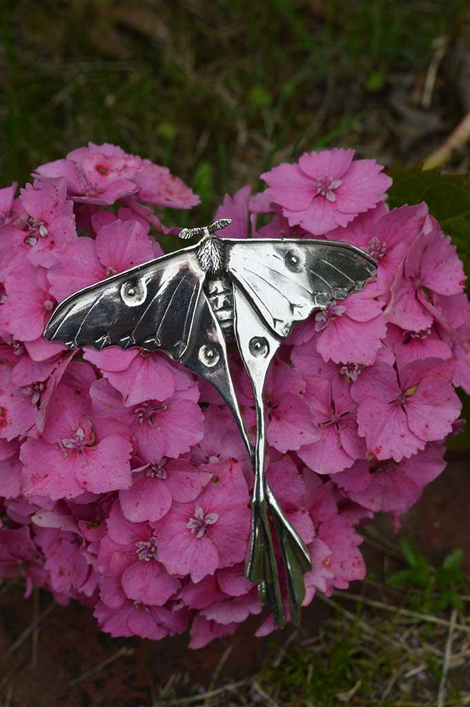 Moon Moth 11 - Emma Keating Jewellery