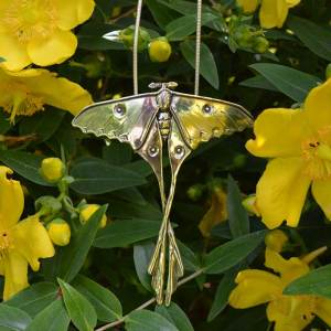 Moon-Moth-2---Emma-Keating-Jewellery