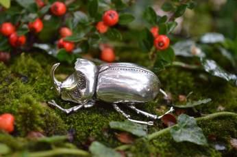 Rhino-Beetle-2---Emma-Keating-Jewellery