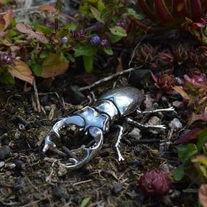 Stag-Beetle-2---Emma-Keating-Jewellery
