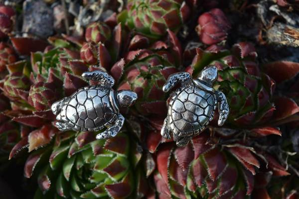 Turtle-studs-2---Emma-Keating-Jewellery