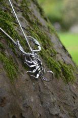 Sheerness Scorpion 9 - Emma Keating Jewellery__sm