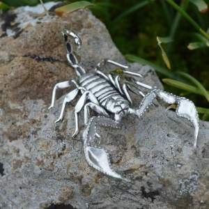 Sheerness Scorpion Orn2 - Emma Keating Jewellery__sm