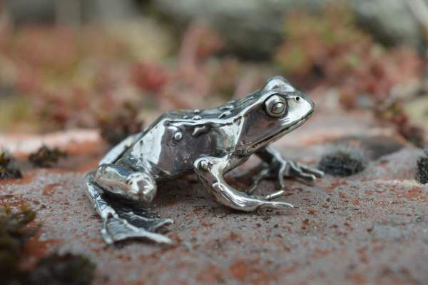 Common Frog L8s - Emma Keating Jewellery