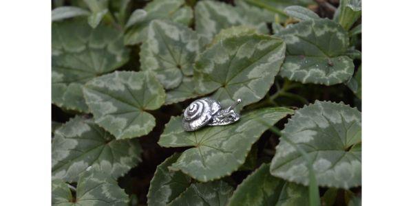 Sterling Silver Garden Snail Earring by Emma Keating Jewellery