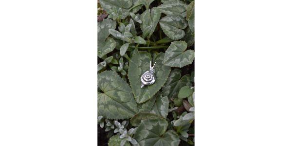 Snail Stud Earring in Sterling Silver by Emma Keating Jewellery