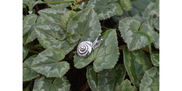 Silver Garden Snail Earring by Emma Keating Jewellery